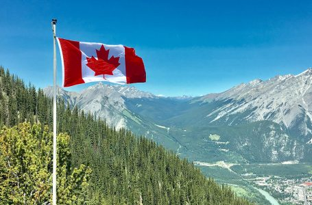 Canada: sortir du «glauque» pour célébrer «la vie», une start-up le propose à Montréal…
