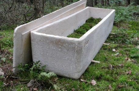 Un cercueil en champignons pour préserver la nature